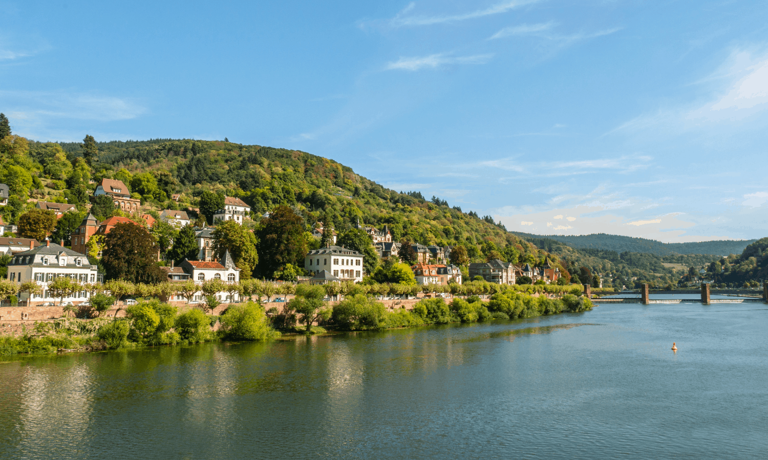 Beautiful view of Heidelberg Town