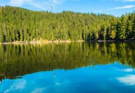 where to travel in Germany including the Black Forest