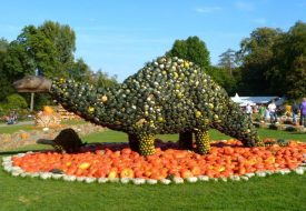 5 Reasons to Visit the World's Largest Pumpkin Festival in Germany in 2020