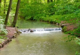 The English Garden in Munich: Why I Love this Park